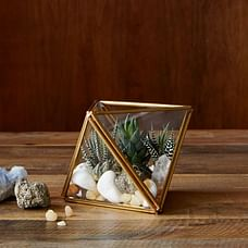 Glass + Metal Faceted Terrariums
