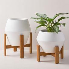 Ilya Turned Wood Planters - White