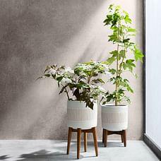 Mid-Century Turned Wood Leg Planters - White + Gold