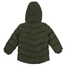 Boys Full sleeves Jacket - Olive