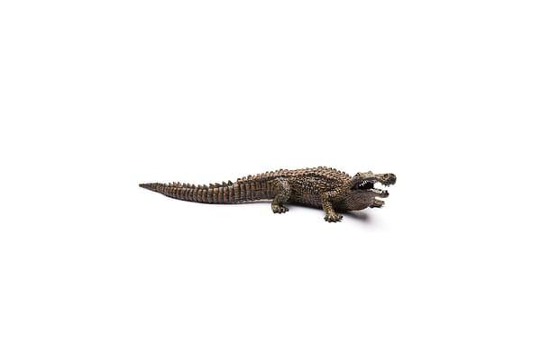 Collecta Sarcosuchus Toy