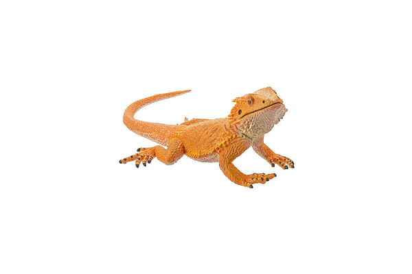 Collecta  Bearded Dragon Lizard Figure