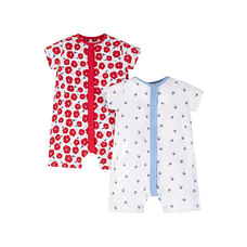 Red And Blue Floral Rompers - 2 Pack