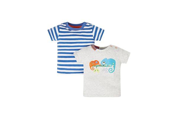 Chameleon Stripe T-Shirts - 2 Pack