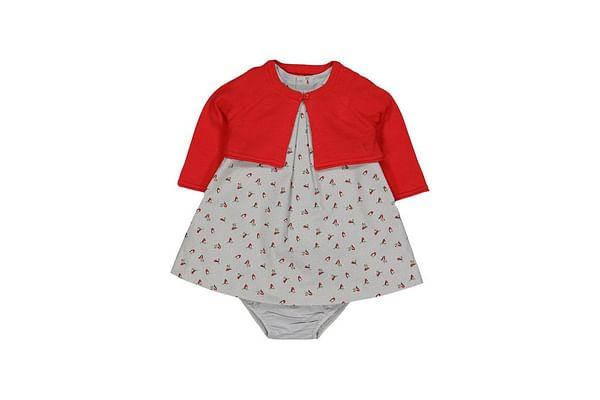 Grey Robin Print Dress And Cardigan