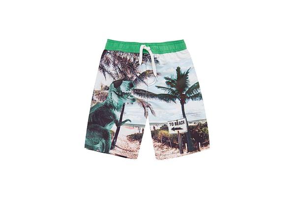 Boys Dinosaur Beach Swim Shorts