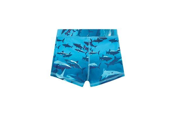 Boys Shark Trunkie