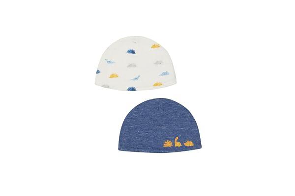 Boys Dinosaur Hats - 2 Pack - Multicolor