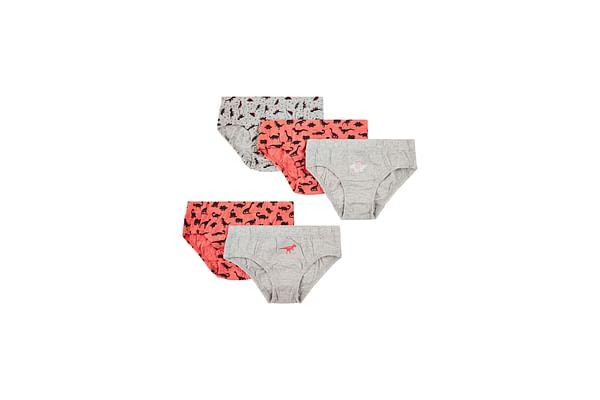 Boys Dinosaur Briefs - 5 Pack - Multicolor