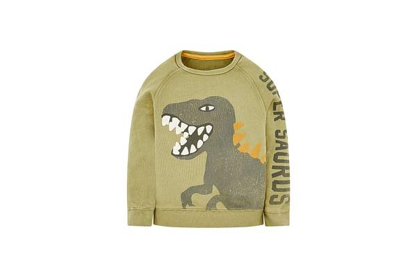 Khaki Dinosaur Sweat Top