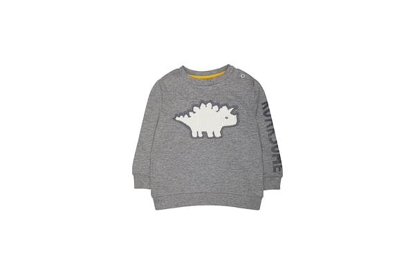 Grey Roarsome Dinosaur Sweat Top