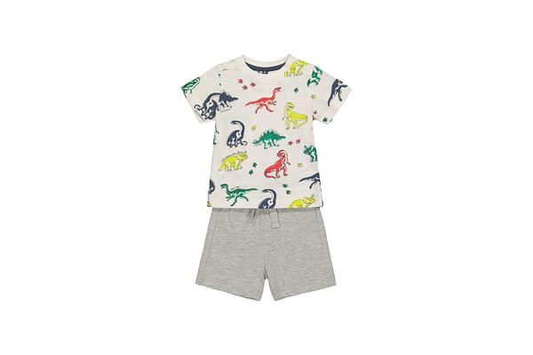 Dinosaur T-Shirt And Grey Shorts Set