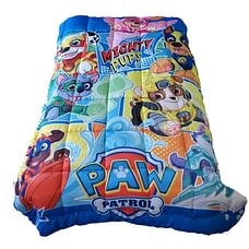Wiggle wink Paw Patrol Mighty Pups Toddler comforter
