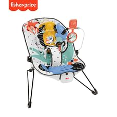 Fisher Price Carnival Comfort Curve Bouncer
