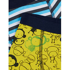 Boys Briefs- Multicolored