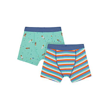 Boys Briefs- Multicolored