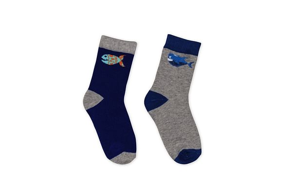 Boys Socks- Multicolored