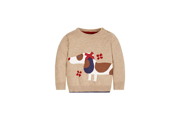 Girls Full Sleeves Sweater Dog With 3D Bow Design - Beige